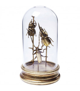 Objeto decorativo Insects Tre