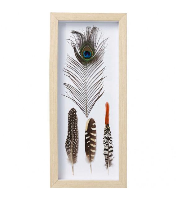 Cuadro Feathers