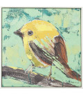 Cuadro Bird Green Back 40x40cm