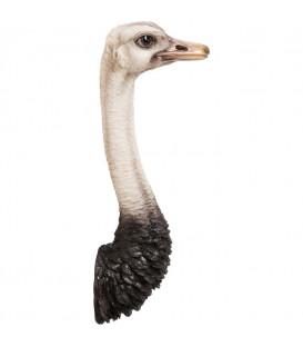 Decoración pared avestruz