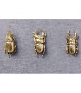 Decoración mural Bugs Quattro