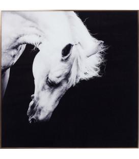 Cuadro Alu Proud Horse