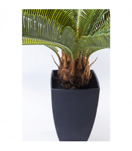 Planta decorativa Cycas Tree 78cm