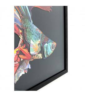 Cuadro Art Betta Fish Colore derecha 65x65cm