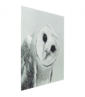 Cuadro cristal Owl Face One 60x60cm