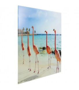 Cuadro cristal Flamingo Walk 80x80CM