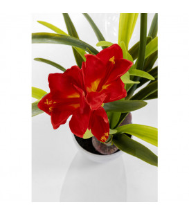 Planta deco Amaryllis Rojo 98cm