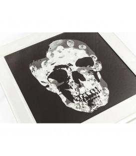 Caja Frame Skull