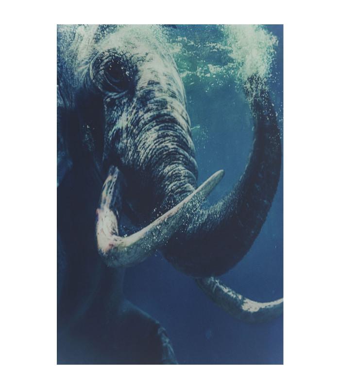 Cuadro cristal Swimming Elephant 180x120cm -Kare Design - Joy of Living
