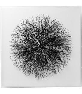 Marco decorativo Vascular blanco 90x90cm