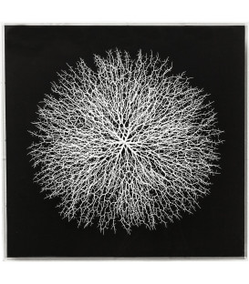 Marco decorativo Vascular negro 90x90cm