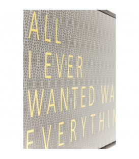 Cuadro All I Ever Wanted 41x31cm