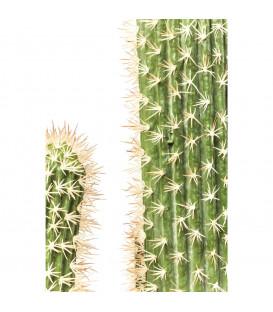 Planta decorativa Cactus Pot 170cm