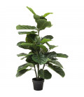 Planta decorativa Fiddle Leaf 120cm