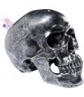 Hucha Cráneo plata Antique