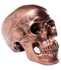 Hucha Cráneo cobre Antique